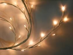 CADENA LUZ LEDS BLANCO CALIDO 160 LEDS 5 METROS